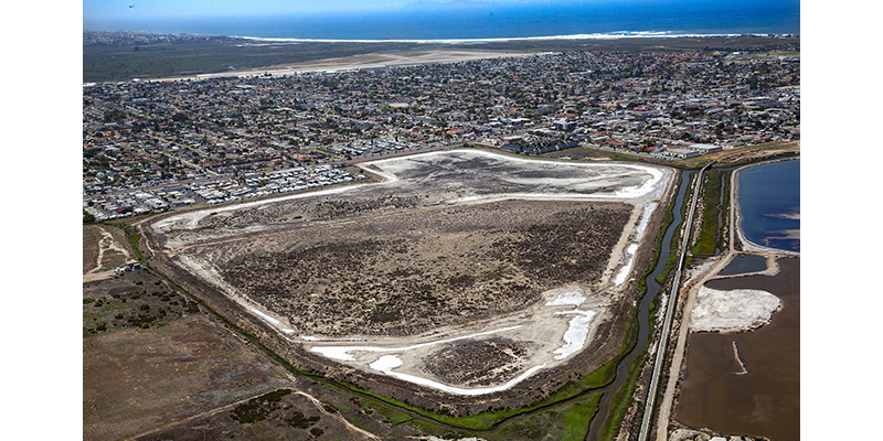 Port of San Diego approves agreement for South San Diego Bay Wetlands restoration and enhancement efforts