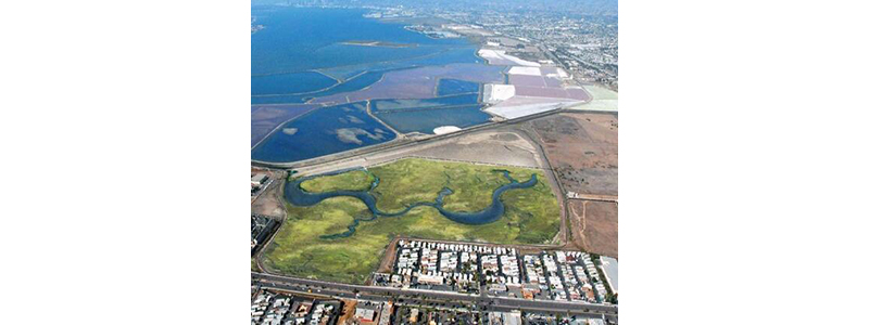 Port of San Diego's proposed wetland mitigation bank in the South Bay advances to California Coastal Commission