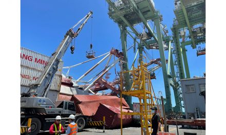Container ship in Port of Kaohsiung strays off course, collapses gantry crane