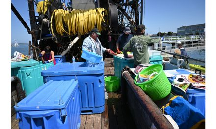 Port of Redwood City reels in public with mini-Fisherman's Wharf