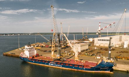Liebherr Rostock reaches milestone in manufactured and delivered maritime cranes